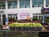 마을을 행복하게 발효시키는 구포1동 1500포기 김장나누기