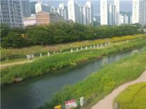 부산 북구 '제1회 2019 생물다양성 탐사' 행사 개최